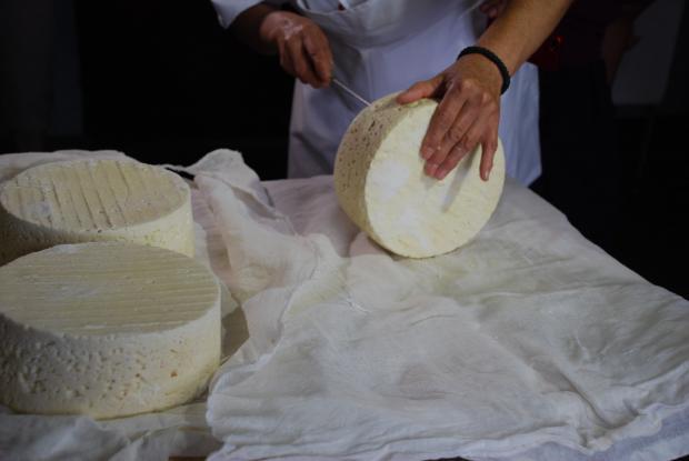 В края на януари се организира курс за технолози в млечната индустрия
