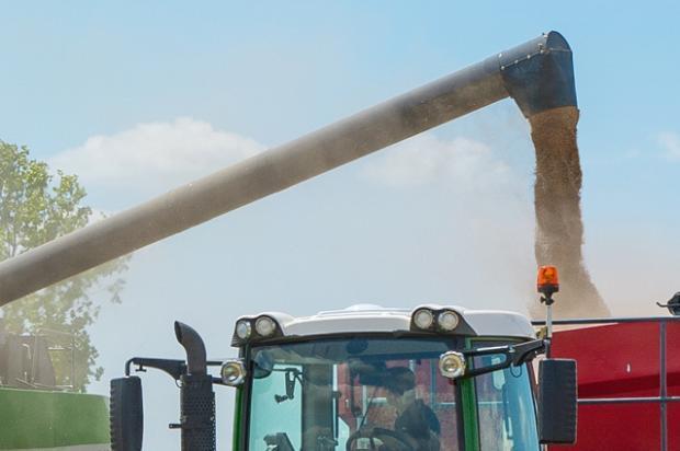 Агенция на ООН повиши рязко прогнозата си за световната зърнена реколта