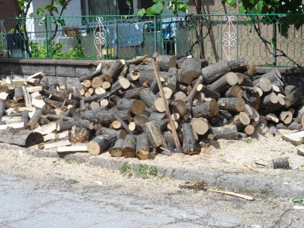 Обособиха 8 централни склада за дърва в Югозападна България