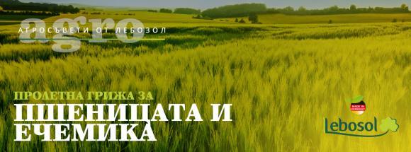 Какво може да направите при затруднена вегитация на пшеницата и ечемика през пролетно-летния период