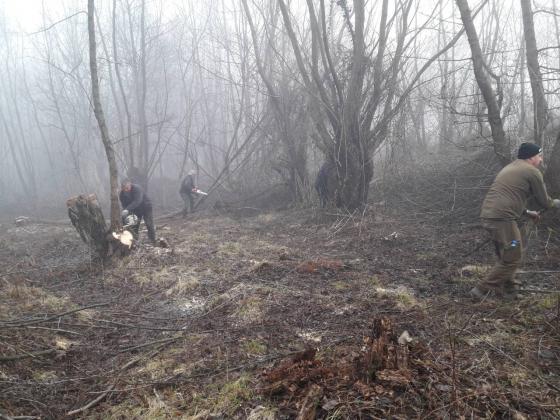 Горски продължават да разчистват дървета и храсти по границата с Македония