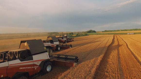 Големите селскостопански фирми в Русия съсипват дребните зърнопроизводители с диктат на цените