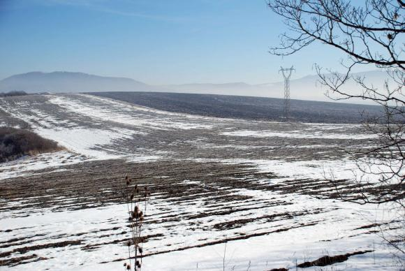 Последният за сезона дебел сняг спаси посевите от преждевременно развитие