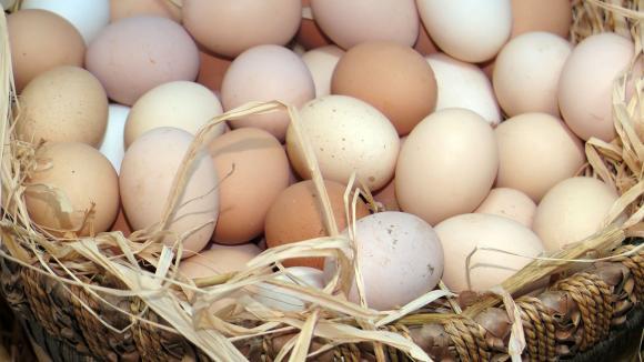 Разнопосочни изменения в цените на яйцата в страната