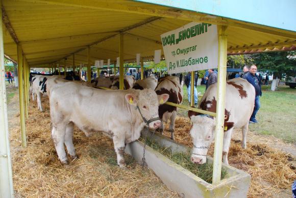 В края на април край Сливен ще се проведе националното изложение по животновъдство