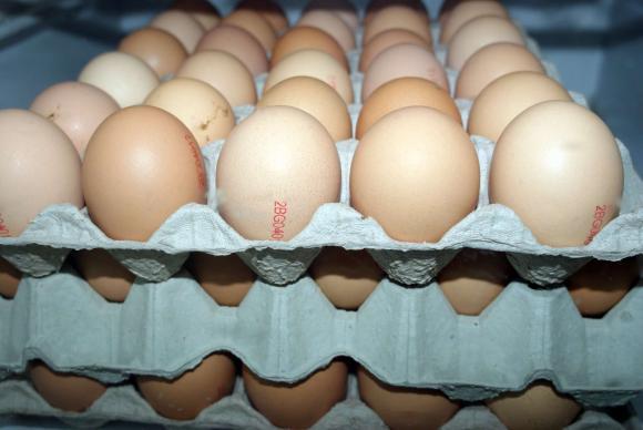 Цени на едро и на дребно на яйца в страната