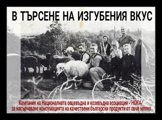 Купувайте българско овче мляко и сирене, призовават животновъди