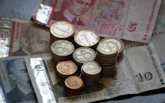 Разходи и приходи при отглеждане на кладница със субстрат