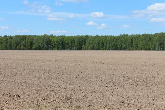 Арендатори наемат земя с наддаване на търгове