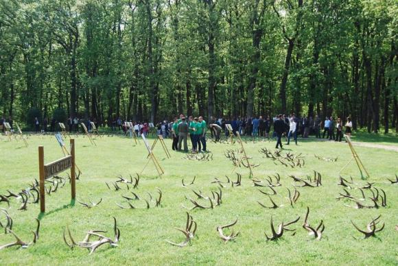 Ловно стопанство организира поредно изложение на паднали еленови рога