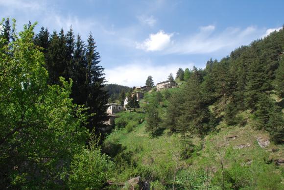Декларация за влиянието на климатичните промени върху горите е подписана между Централна, Източна Европа и Китай