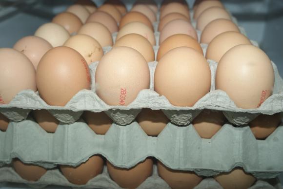 Цените на яйцата паднаха със стотинка