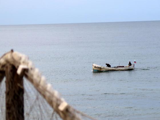 Капитаните на риболовни кораби до 10 метра вече няма да водят риболовен дневник