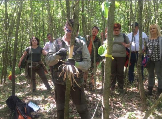Проведоха обучение за извеждане на сечи за индивидуално производство на висококачествена дървесина