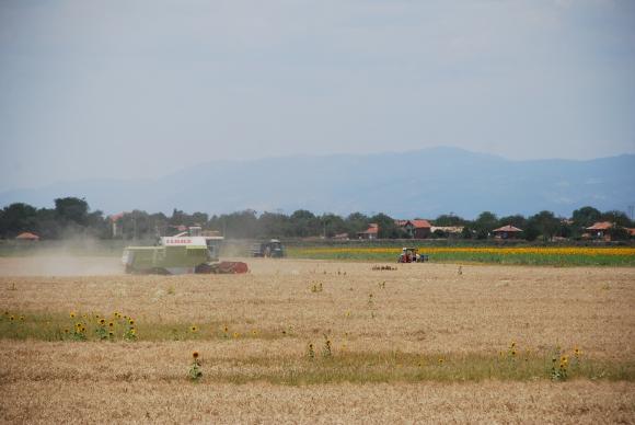 Нови щети за земеделците след пороите в Южна България