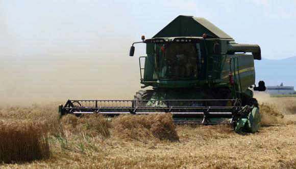 С 22 млн.т пада световният добив от пшеница заради слабите реколти в ЕС, Русия и Украйна