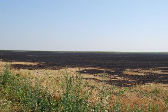 Фермерка сигнализира за потулване на палеж на стърнища в Русенско