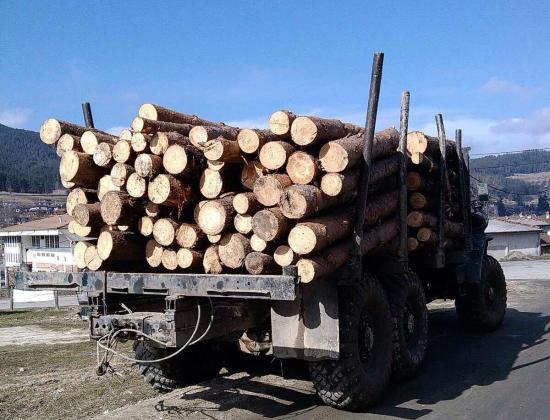 Над 11 700 проверки в горите на Югозападното държавно предприятие
