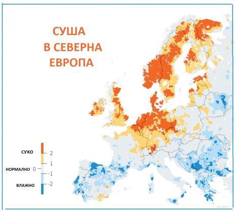 Сушата вдигна цените на пшеницата в ЕС до най-високо ниво от три и половина години насам