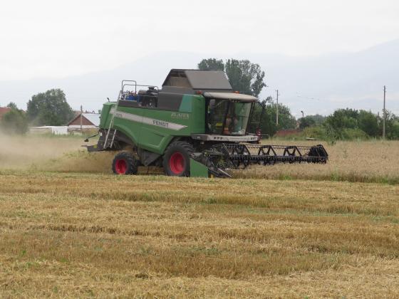 Германия ще внася зърно. Заради жестоката суша страната не може да върже зърнения баланс.