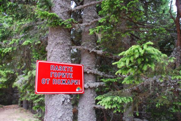 Над 2 300 лесничеи дежурят денонощно срещу евентуални палежи в горите