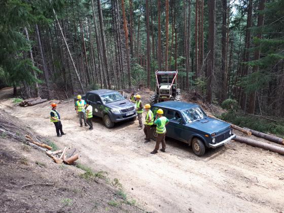 Успешно приключи одита по стандарта FSC в държавните гори в Кюстендилско