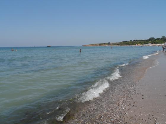 България участва в изработването на инструмент за устойчиво използване на морското биологично разнообразие