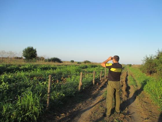 Цената за оградата с Румъния порасна от 300 хиляди на 1,1 милиона лева