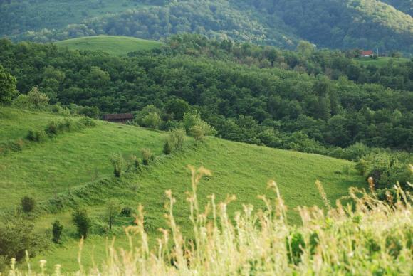 Вместо кодекс ще има Закон за поземлените отношения и опазването на земеделските земи