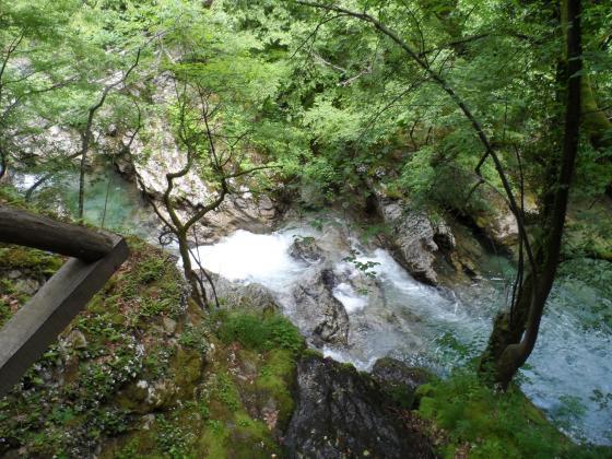 Доклад на WWF: Светът подценява значението на реките