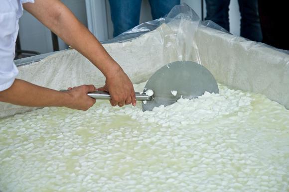 Демонстрират как се прави мляко в йогуртиера на събор в Луковит
