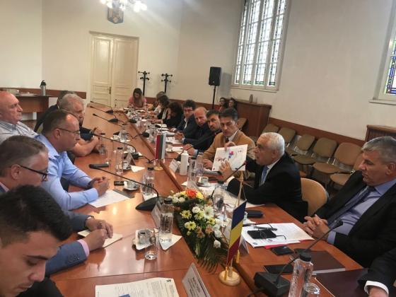 България и Румъния обменят опит по борбата с африканската чума по свинете