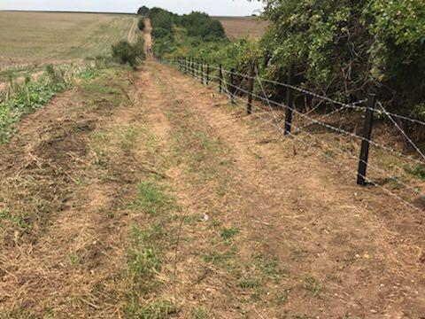 Скандалът с оградата срещу глиганите свали от поста шефа на агенцията по горите