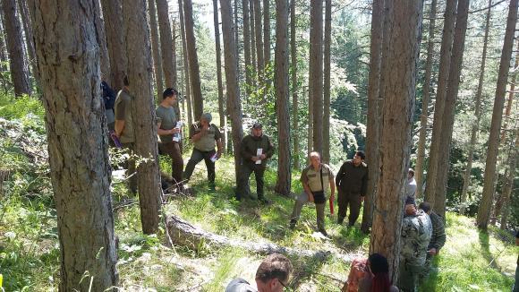 В Югозападното предприятие покриват международни стандарти за управление на горите