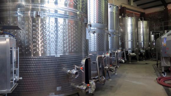 Излезна заповедта за повишаване на алкохолното съдържание на прясното грозде от сорт Широка мелнишка лоза