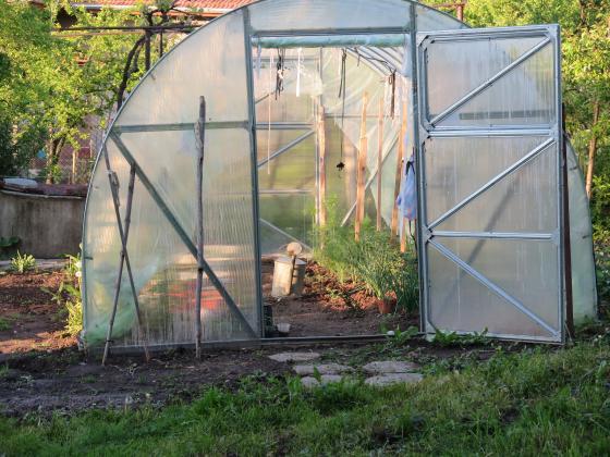 Обеззаразете градината и оранжерията преди новия сезон