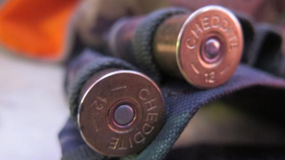 Ловец простреля друг, докато търсят стреляна свиня