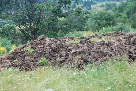 ЕС въвежда правила за по-екологосъобразни торове
