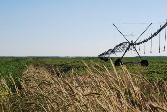 Поливни земи от държавния и общински фонд ще се наемат без търгове от фермери, които са ги изградили