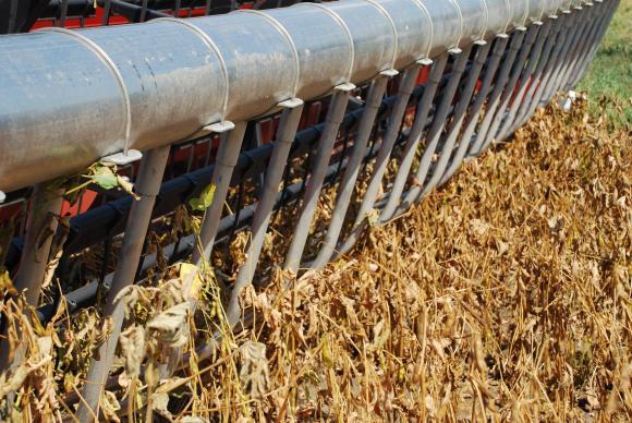 До седмици ЕС ще разреши използването на американска соя за биогорива
