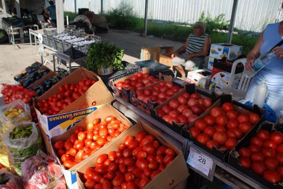 Одобрени са 100 хиляди лева за сертифициране на градинарите