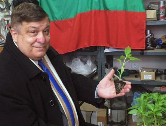 Георги Василев: Фермери с лавандула и зърно ще заемат мястото на фалиралите пиперопроизводителите
