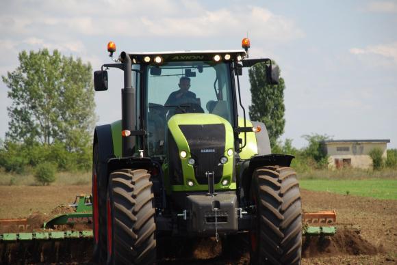 Фермерите в ЕС увеличиха площите с есенна пшеница за сметка на рапицата