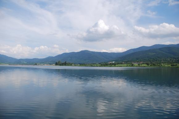 Доброволци възстановяват ценни крайречни гори по Дунав и Марица