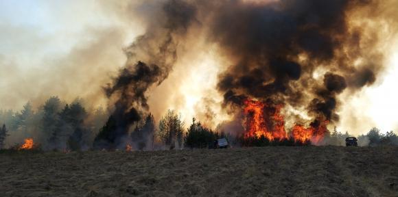 Маса пожари, избухнали след палене на стърнища в Югозападна България