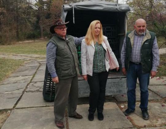 Разселват 500 яребици в ловното стопанство в Кричим
