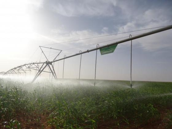 Близо половината от потреблението на вода в ЕС е в земеделието, затова пестете!