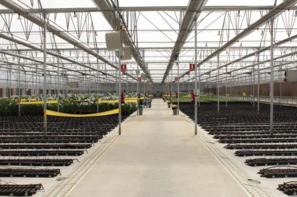 Четири несъгласия на бизнеса с наредбата за признаване на организациите на градинари и овощари