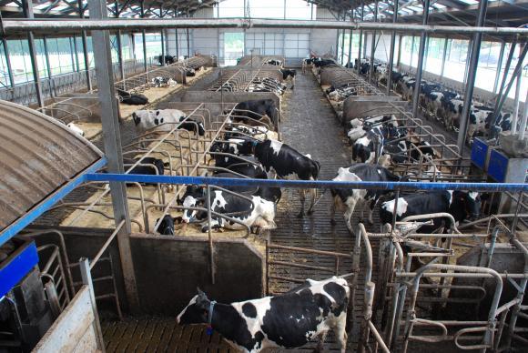 Одобрена е още една помощ за доилни апарати в малките ферми