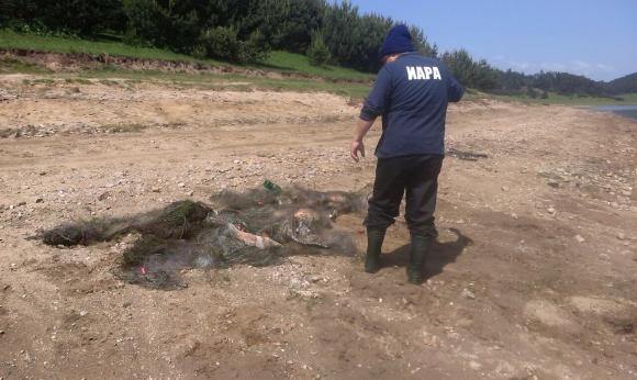 Инспектори на ИАРА извършват масови проверки